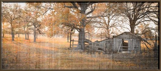 Texas Shed_9202846240_o.jpg